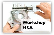 workshop-msa