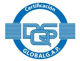 logo-iso-globalg-a-p