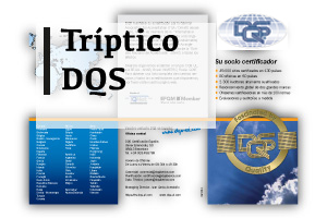 enlace-triptico-dqs-new